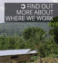 Find out more about where we work